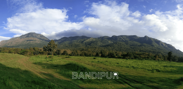 Bandipur mountain